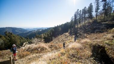 Tokyo Hachimine Mountain Trail Race (40KM)