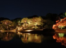 Rikugien Illuminations Autumn Foliage Tokyo Metropolis Recommends November