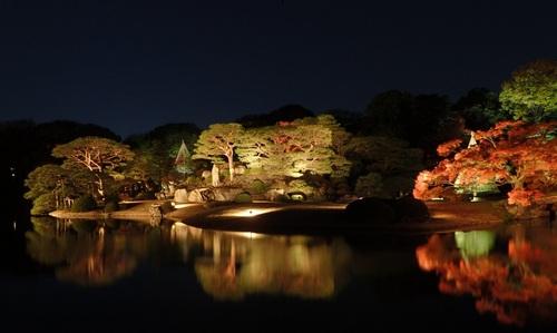 Rikugien gardens, illuminations
