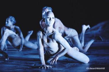 Bangarra Dance Theatre Saitama Art Theater Foundation Dance Australian Aboriginal Culture Stage Spirit I.B.I.S