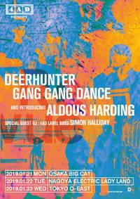 Deerhunter, Gang Gang Dance, Aldous Harding Tokyo Concert