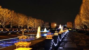 Showa Kinen Park Illuminations