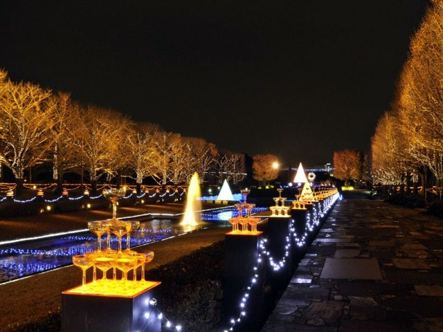 Christmas 2018 Illumination Showa kinen park champagne fireworks holiday