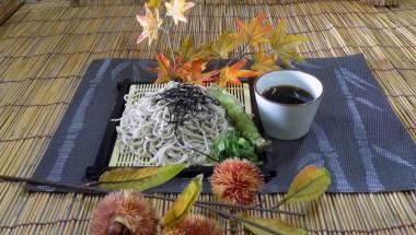 Soba & Sake Festival