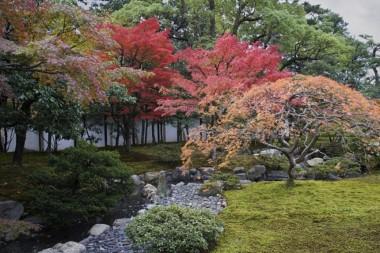 Autumn Public Opening of Inui Street sakashita gate the imperial palace