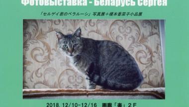 Sergey's Belarus