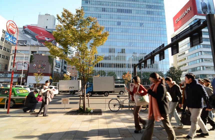 Rediscovering Tokyo Omotesando building