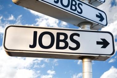 ASEAN Job Fair Tokyo Company Graduates