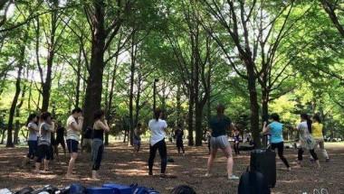 Yoyogi park Kickboxing