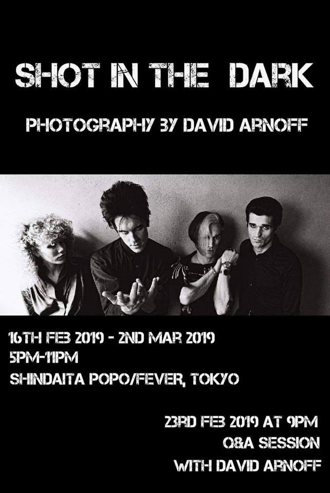 shot in the dark David Arnoff