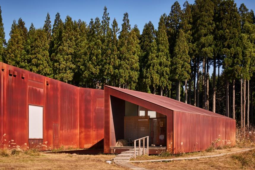 Tezuka_BiodiversityMuseum_151