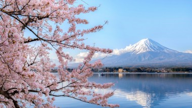 Spring in Fuji Five Lakes