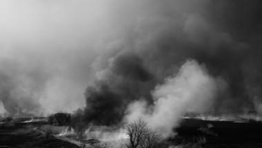 Tochigi Watarase Wetlands Burn Alan Black Photography