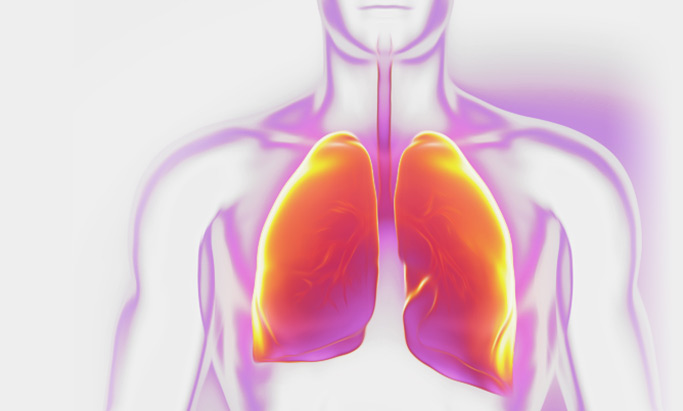 Respirology, lung and chest physicians meet 2019 medicine abu dhabi events