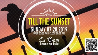 Till The Sunset Vol. 17