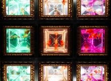 art aquarium 2019 nihombashi video kingyo goldfish