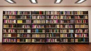 Tokyo's Literary Hotspots