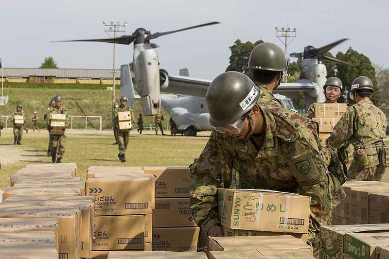 JSDF military relief