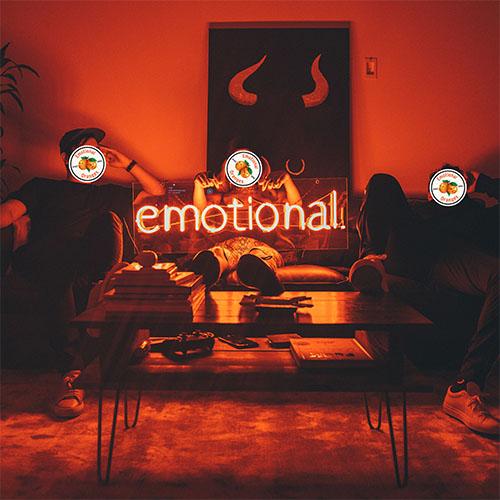 emotional orages smash Gig WWW X Funk Soul