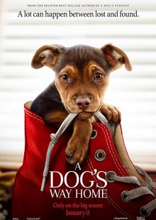 A Dog's Way Home, kids, movie review, Don Morton, cute