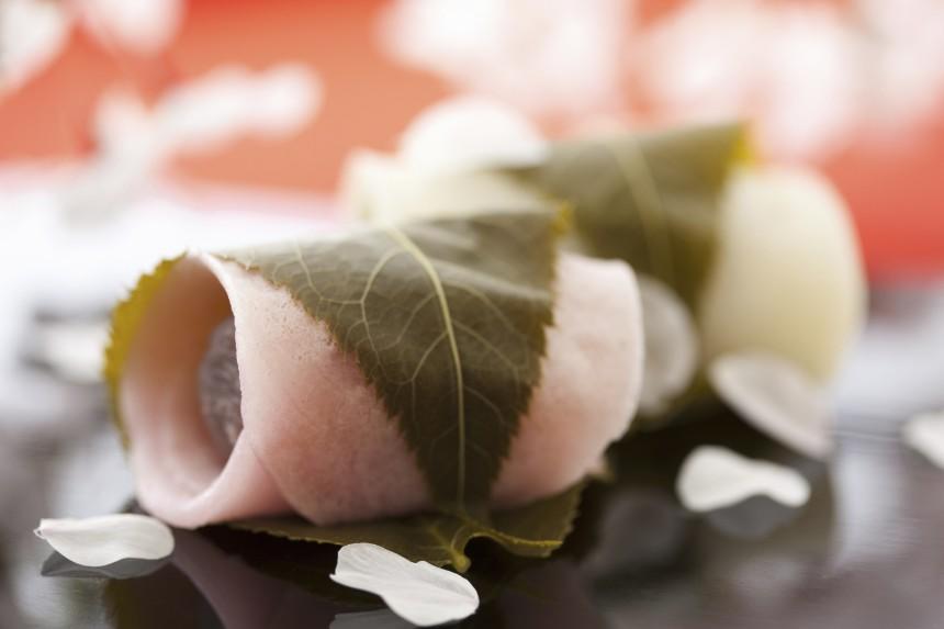 Savoring Spring: Hanami Dining Guide