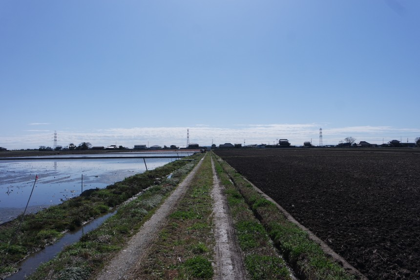 Sankyodai Lotus Root Farm