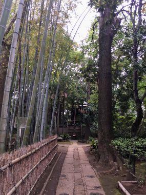 Myofukuji temple