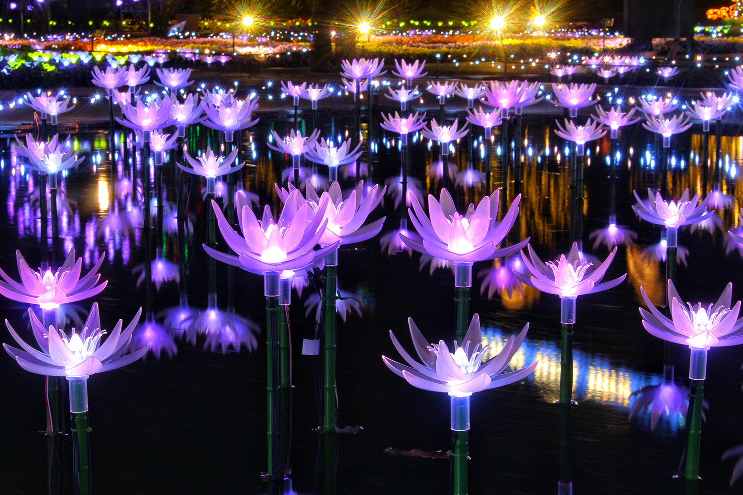ashikaga park illuminations metropolis magazine japan