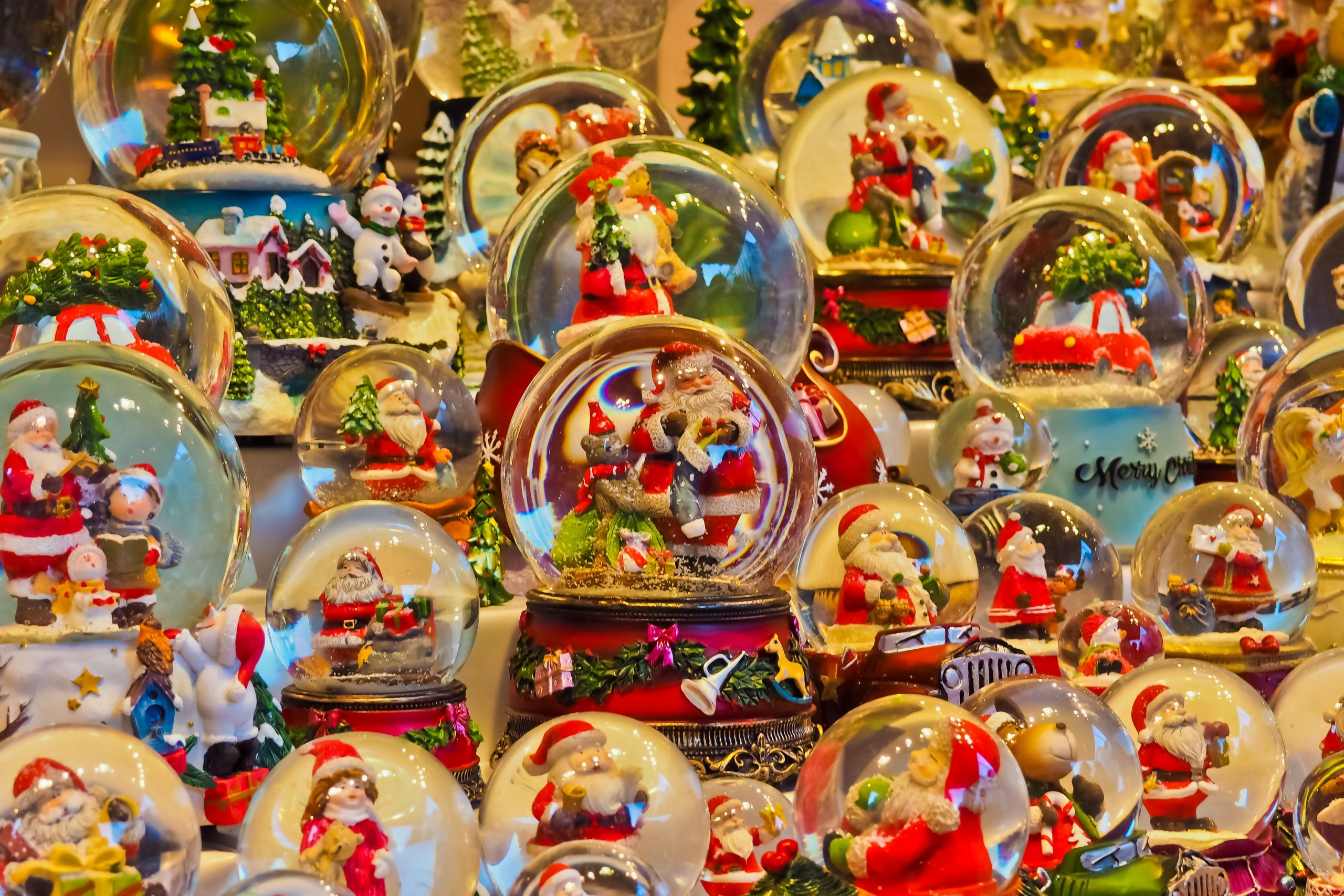"""""""Christmas Garden"""" at Shiba Park"""