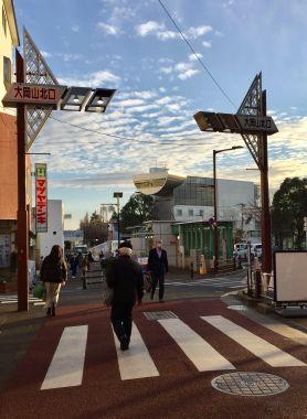 ookayama-heartlands-metropolis