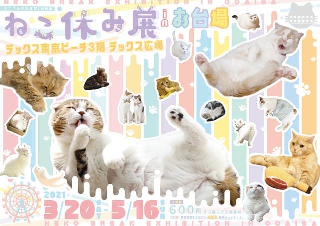 Neko Break Odaiba Cat exhibition